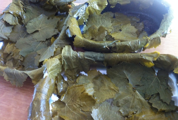Stuffed grape leaves-1